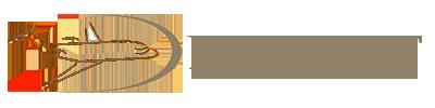 Duru Jet Logo Beyaz